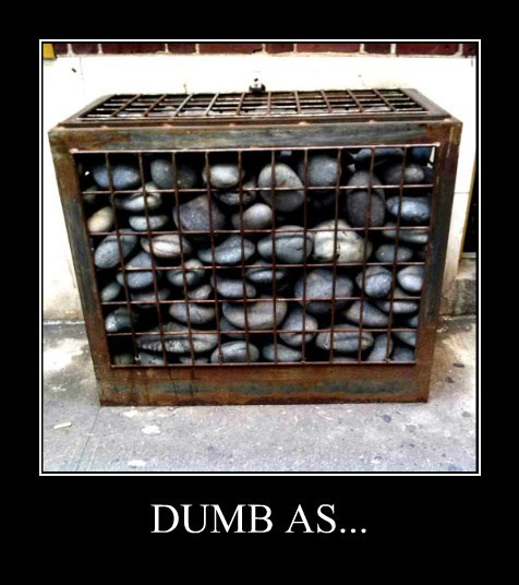 dumb-box-rocks.jpeg